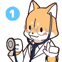 出動!わんこドクター