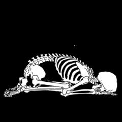骨のスタンプ